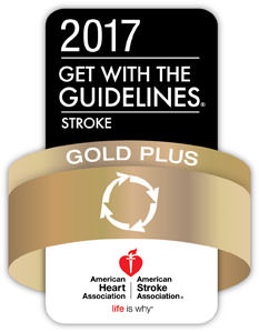 2017 AHA Gold Plus Badge